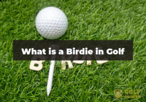 What is a Birdie in Golf